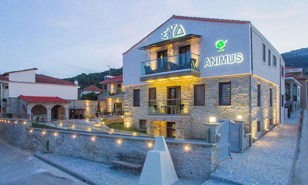 ANIMUS ΣΥΔ